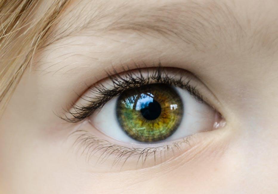 40 Nouns words to describe eyes